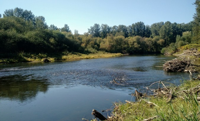 Molalla River