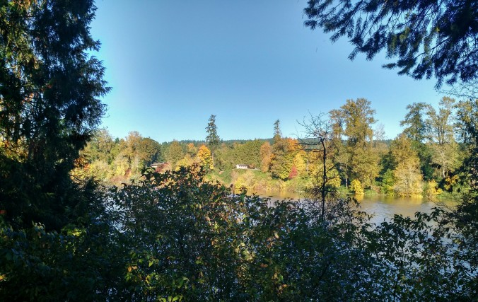 Fall on the Willamette