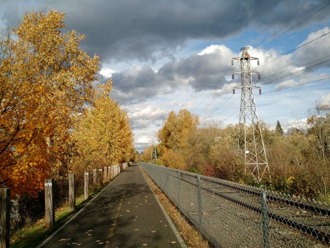 Springwater Corridor bike path