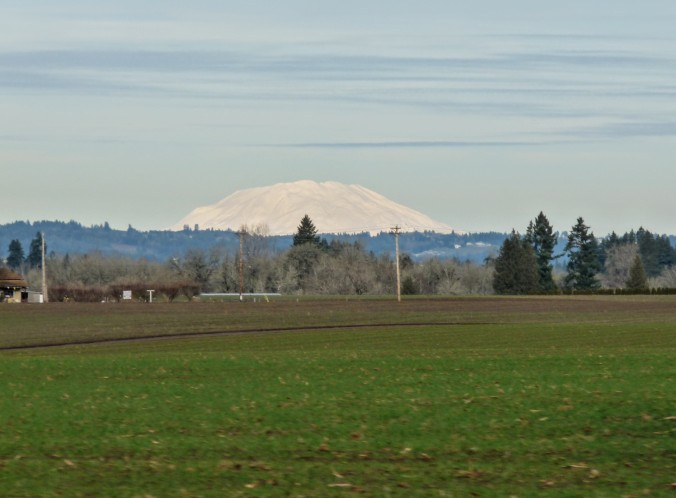 On the drive out we found Mt. St. Helens