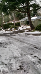 Our icy street