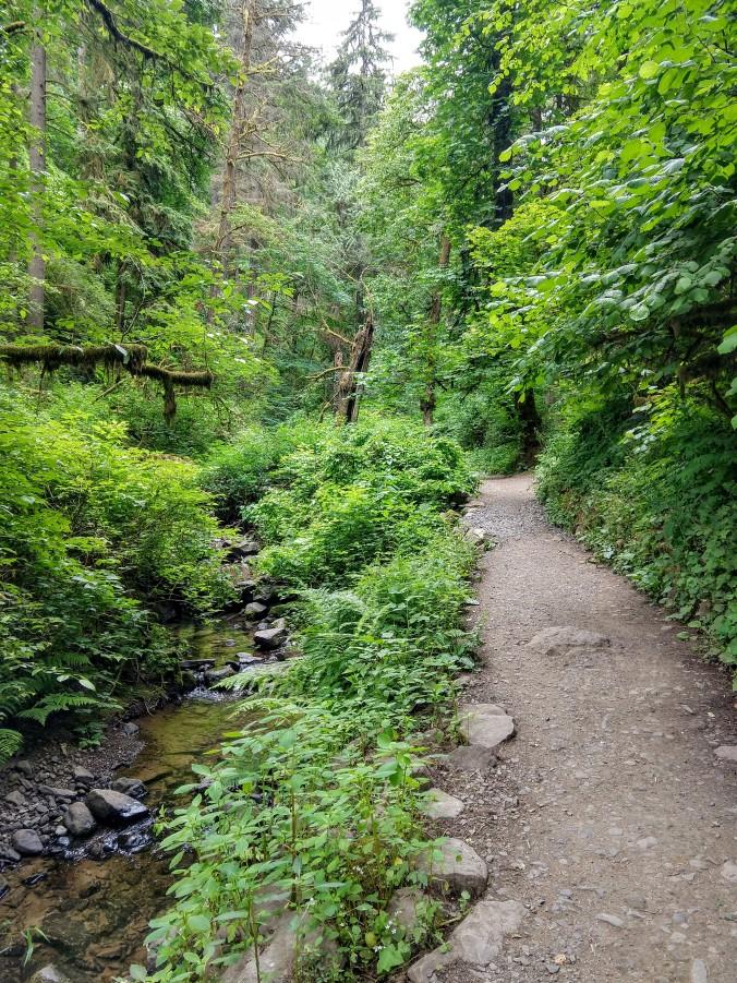 Macleay Trail and Balch Creek