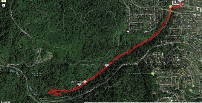 Macleay-Balch Creek hike