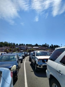 ferry lineup