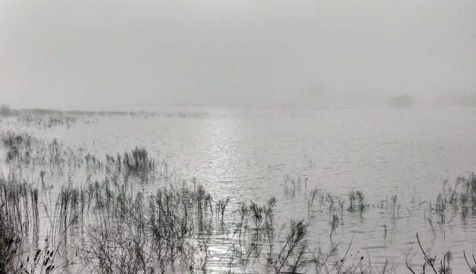 Fog and flood