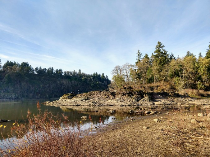 Elk Rock Garden cliff (left) and island on the right