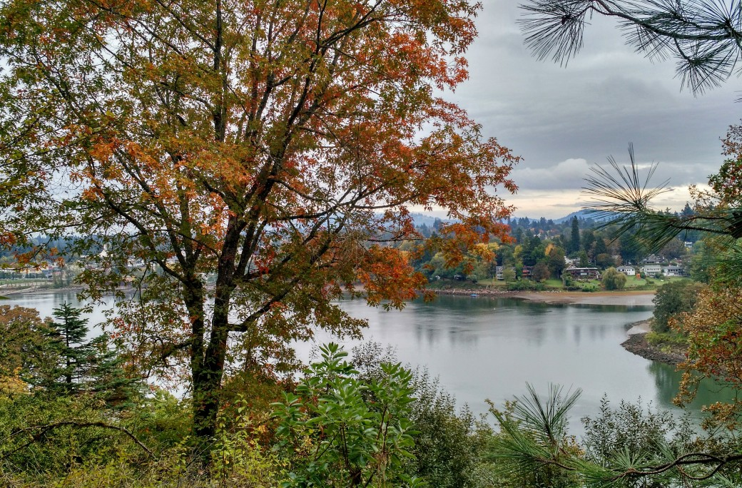 A fall view toward eastern Portland
