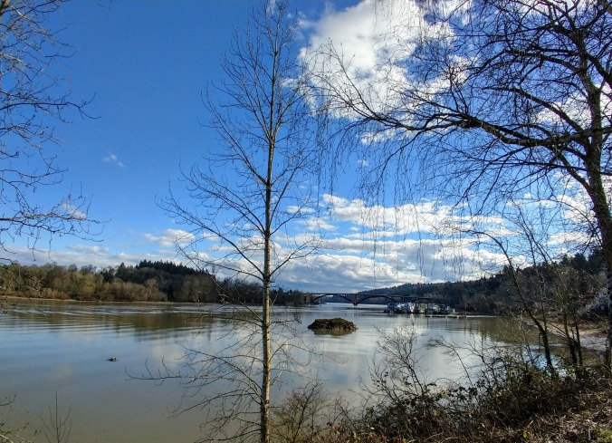 Walking south, Sellwood Bridge in the distance