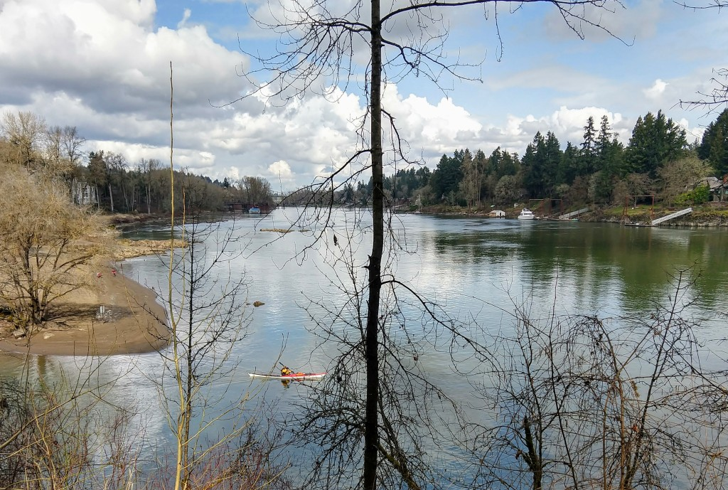 Kayaker on the Willamette River
