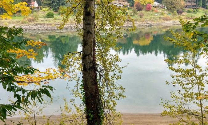Reflecting along the Willamette