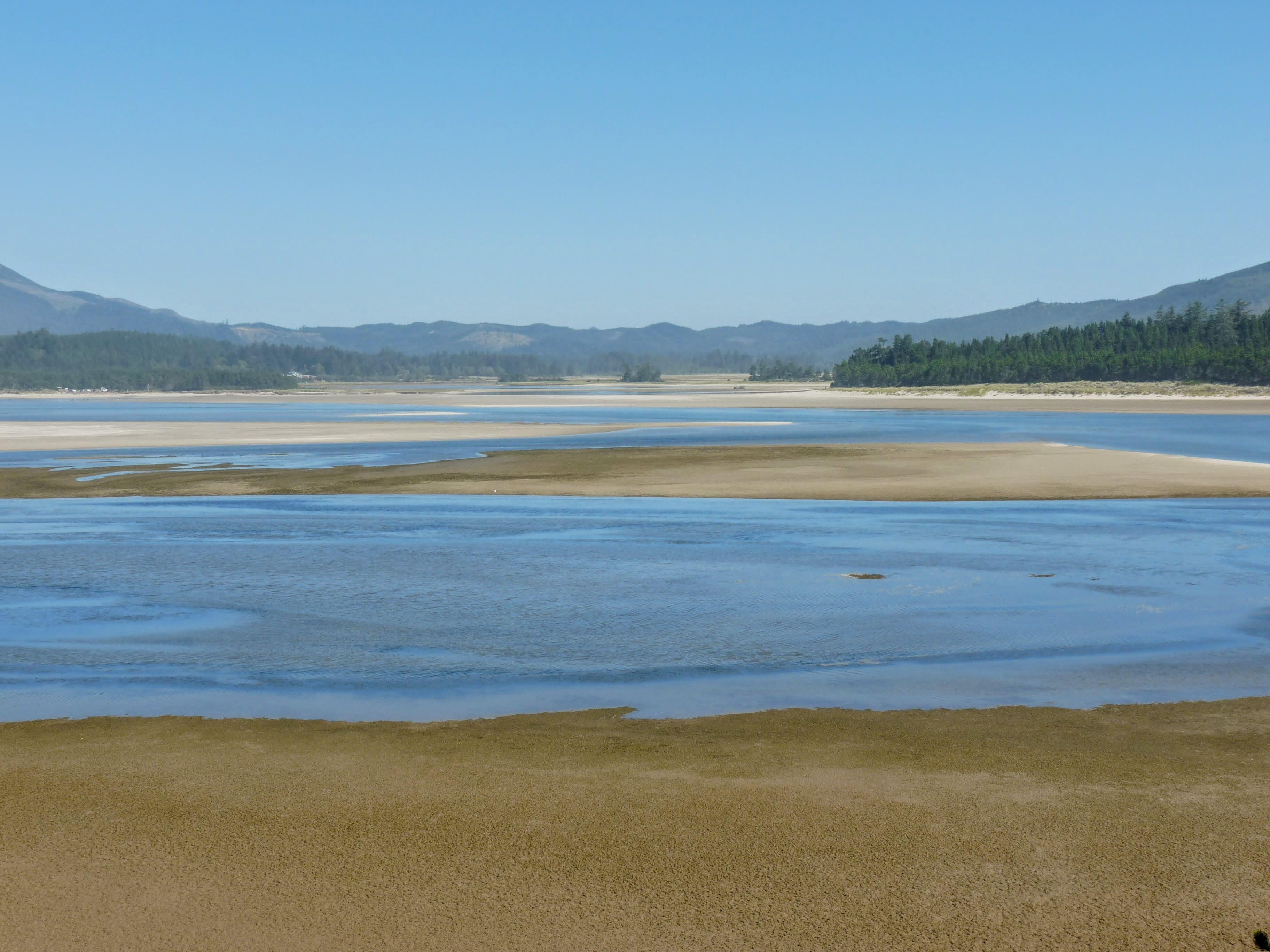 Sand Lake low tide