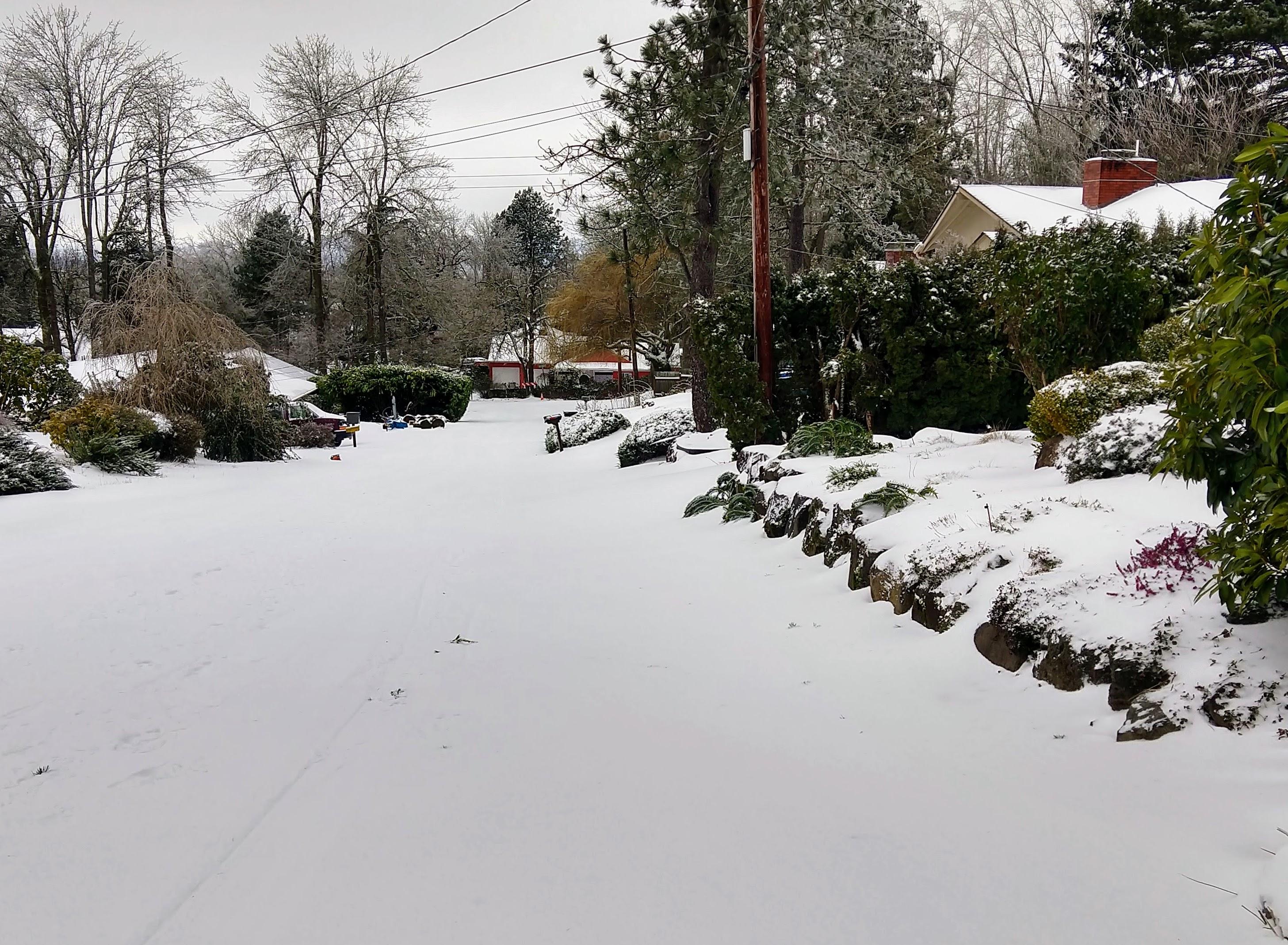 quiet snowy street