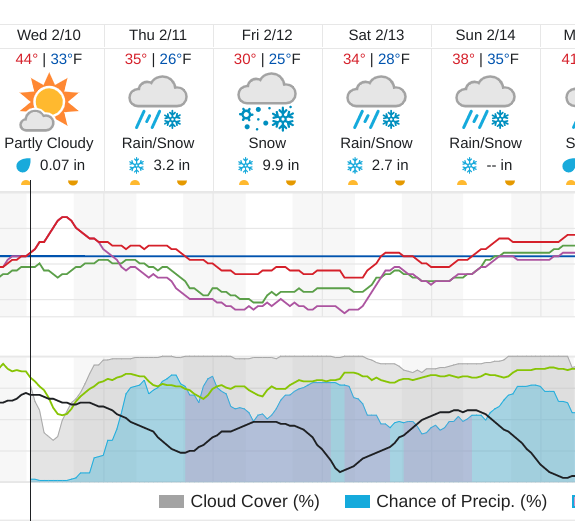 The forecast: Shall we place bets?